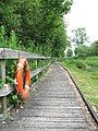 The Ted Ellis Nature Reserve - boardwalk along Home Dyke - geograph.org.uk - 1341526.jpg