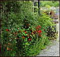The Walled Garden, 'Potting-shed' restaurant, Applecross. - panoramio.jpg