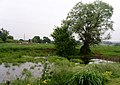 The pond by Ridgend Barn - geograph.org.uk - 186189.jpg
