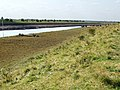 The river bank on the River Witham, Boston - geograph.org.uk - 558295.jpg