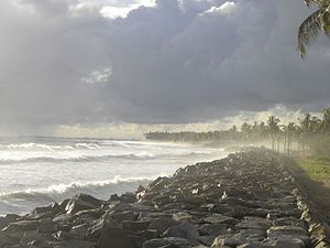 Seawall - A seawall, made of rocks, in Paravur near Kollam city in India.