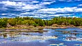 This was taken on a stop along the Trans Canada Highway. This is also was the first blended or HDR photo I ever took. - panoramio.jpg