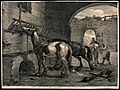 Three horses inside a derelict stable; one is eating from a Wellcome V0021745.jpg