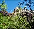 Through the Trees, Zion NP 4-30-14k (14413323102).jpg