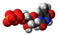 Thymidine diphosphate anion 3D spacefill.png