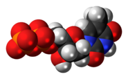 Space-filling model of the Thymidine diphosphate molecule, 3- negative charge