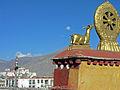 Tibet - Flickr - Jarvis-8.jpg