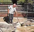 Torremolinos - Crocodile Park2.jpg