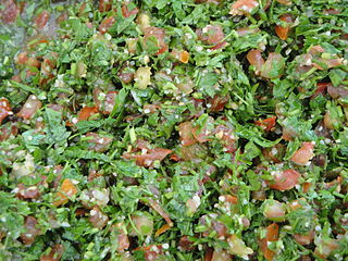 Levantine vegetarian dish