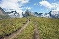 Trail near Hohe Mut.jpg