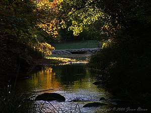 Chickasaw National Recreation Area - Image: Travertine creek fall evening