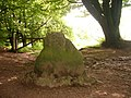 Triscombe Stone - geograph.org.uk - 1357344.jpg