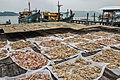 Trockenfisch pulau pangkor malaysia 6.jpg
