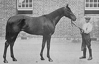 Troutbeck (horse) British-bred Thoroughbred racehorse