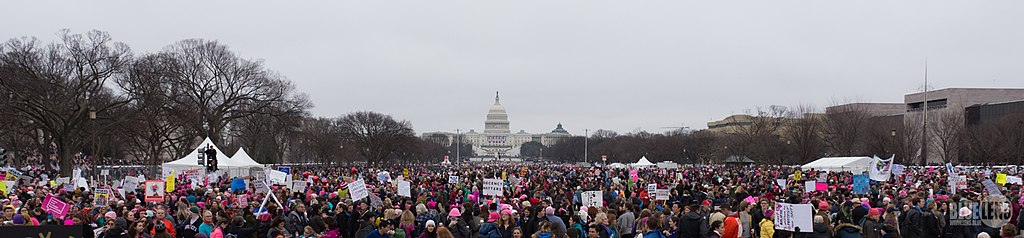 Trump-Womens March 2017-top-1510078 (31638089453)