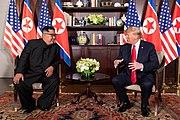 Trump Kim Summit at the Capella Hotel (3)