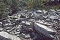 Tuscarora Formation outcrop 1.jpg