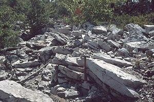 Tuscarora Sandstone - Outcrop of Tuscarora Formation in Thickhead Wild Area, Centre County, Pennsylvania