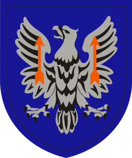 11th Expeditionary Combat Aviation Brigade