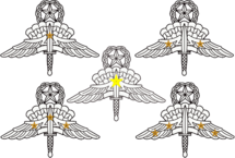 US Army Master Military Freefall Parachutist Badges with Combat Jump Devices.png