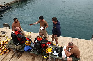 Diving team A group of people working together to enhance dive safety and achieve a task