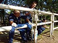 US Navy 090427-N-1618Z-007 Sailors assigned to the guided-missile cruiser USS Antietam (CG 54) clean fencing around a horse pasture at the Riding for the Disabled Association of Singapore.jpg