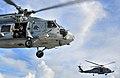 US Navy 100406-N-4774B-356 An aircrew member aboard an SH-60F Sea Hawk helicopter observes flight operations.jpg