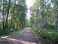 Udelny Park Fermskoje Shosse.jpg