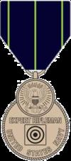 United States Navy Rifle Marksmanship Medal.png