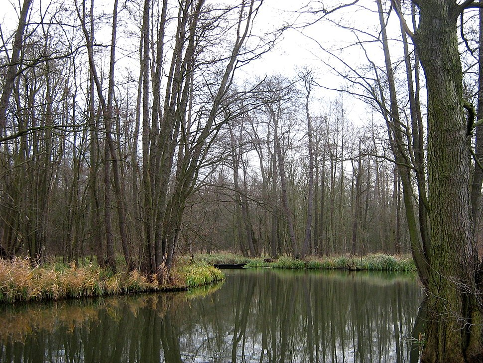 Unterspreewald-Gross-Wasserburger-Spree-01