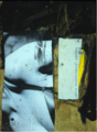 Untitled collage (body) by Christopher Willard.png