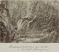 UvA-BC 300.099 - Siboga - bewaarplaats van een dode in de omgeving van de kampong Saget (Nieuw-Guinea).jpg