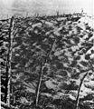 Verdun (HistoriaPolski str.23).jpg