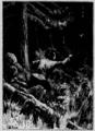 Verne - César Cascabel, 1890, figure page 0095.png
