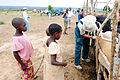 Veterinary civic action project DVIDS199495.jpg