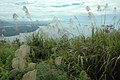 View from Mt. Santubong sumit.JPG