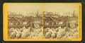 View from Summer Street, from Robert N. Dennis collection of stereoscopic views 2.png