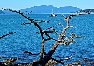 Rosario Strait - Rosario Strait seen from Washington Park, Anacortes, WA