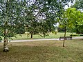 View from the bench (OpenBenches 8275-2).jpg