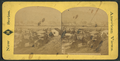 View in Sonoma Co., California, from Robert N. Dennis collection of stereoscopic views.png