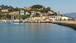 View of Tiburon.jpg