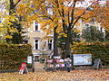 Villa Folke Bernadotte.JPG