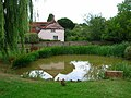 Village Pond and Residents, East Dean - geograph.org.uk - 225630.jpg
