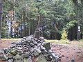 Vrchol Třemošné (778 m) 2.JPG