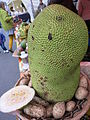 Wädenswil Durian.JPG