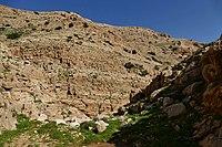 Wadi-Makukh-590.jpg