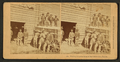 Waiting for your team at the cotton gin, Florida, from Robert N. Dennis collection of stereoscopic views.png