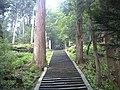 Wakasa Shrine (Stone Steps) - 若桜神社の石段(鳥取県八頭郡若桜町) - panoramio.jpg