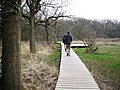 Walking the Board Walk by the Beaulieu River - geograph.org.uk - 381006.jpg