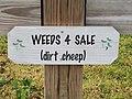 Weed sign - weeds for sale, Lake Placid, Florida.jpg